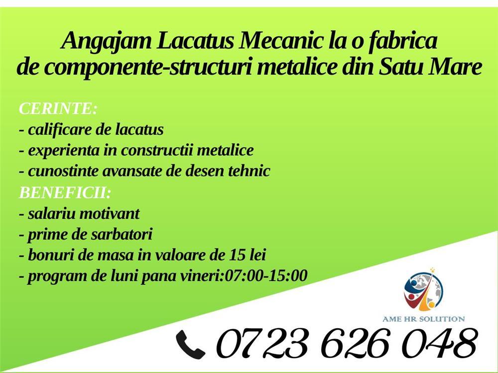 Lacatus mecanic