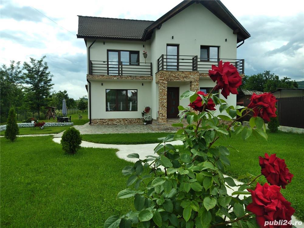 Pensiunea Casa Nusa Baia de Fier