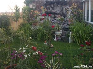 Pensiune de vinzare in Buzias Timis si casa de locuit - imagine 9