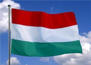 Traduceri de specialitate-legalizate in limba maghiara-germana - imagine 1