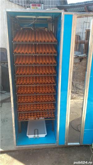 Incubatoare oua - imagine 1