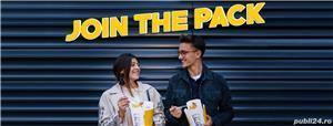 Hai la noi in echipa Noodle Pack! Brasov - imagine 4
