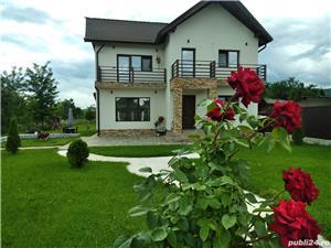 Pensiunea Casa Nusa Baia de Fier  - imagine 1