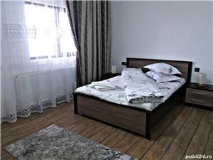 Pensiunea Casa Nusa Baia de Fier  - imagine 9