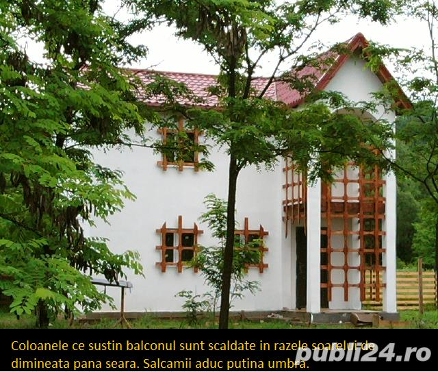 Vila langa Campina 45500 euro