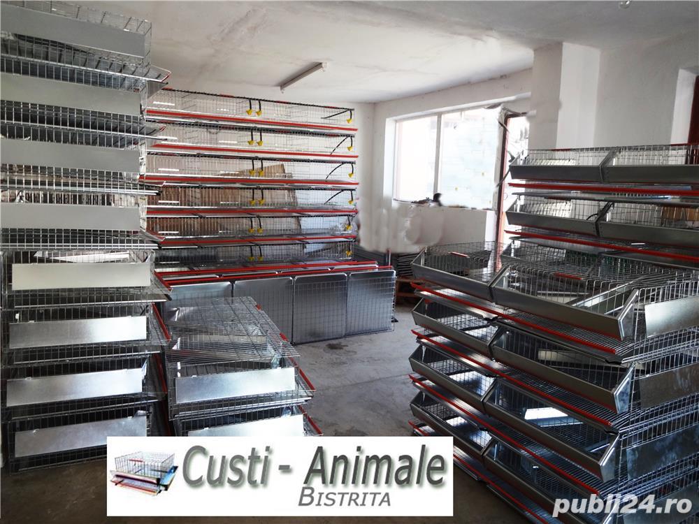 Custi pentru prepelite,pui,gaini,porummbei,iepuri,chinchilla,caini,pisici etc