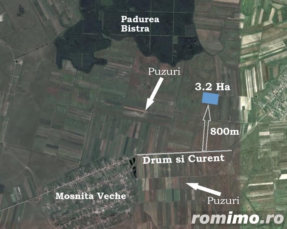 Vanzare  terenuri agricol  32 ha Timis, Mosnita Veche  - 160000 EURO