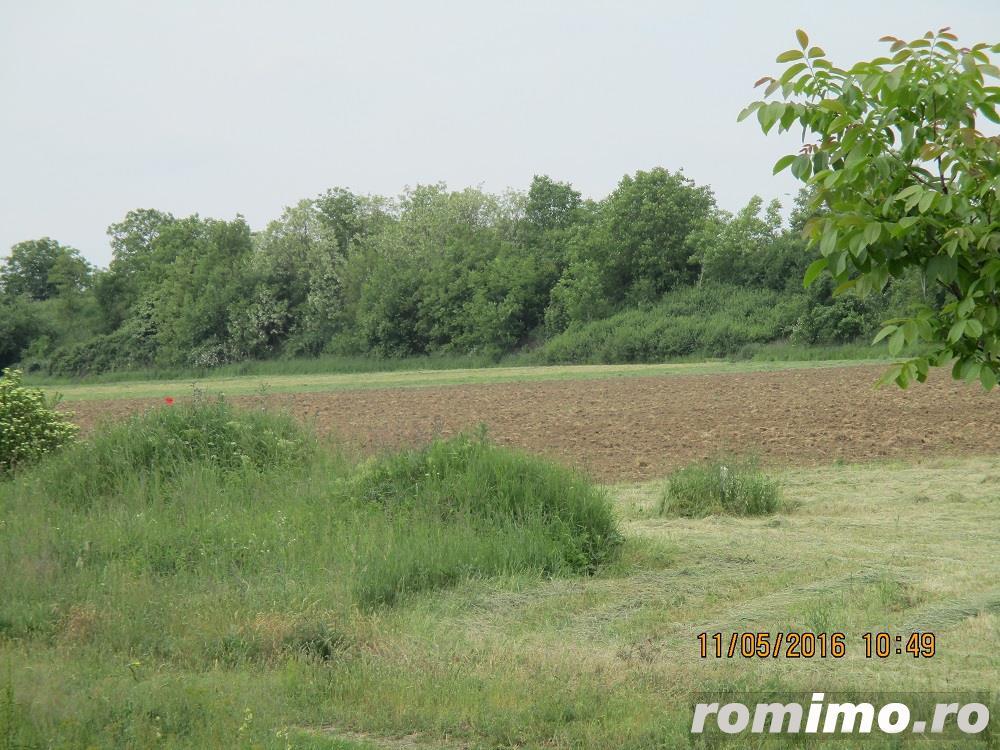 De vanzare teren arabil pentru  pepiniere si sere in zona Calea Sagului