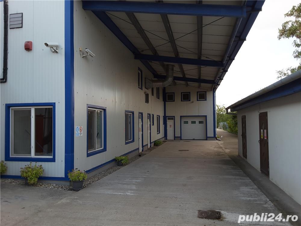 Vanzare(SI IN RATE) hale productie si depozitare + GRATIS CASA 250 mp+1000mp TEREN timisoara,Sacalaz