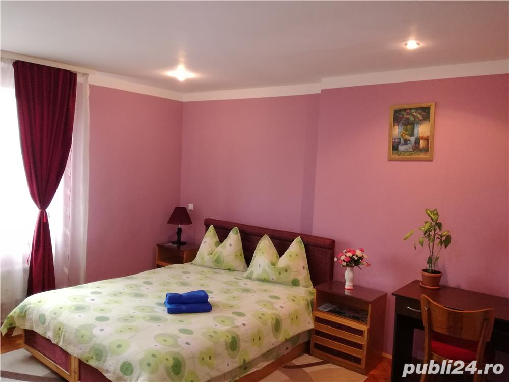 Accommodation in hotel regime  apartment one room ULTRACENTRAL