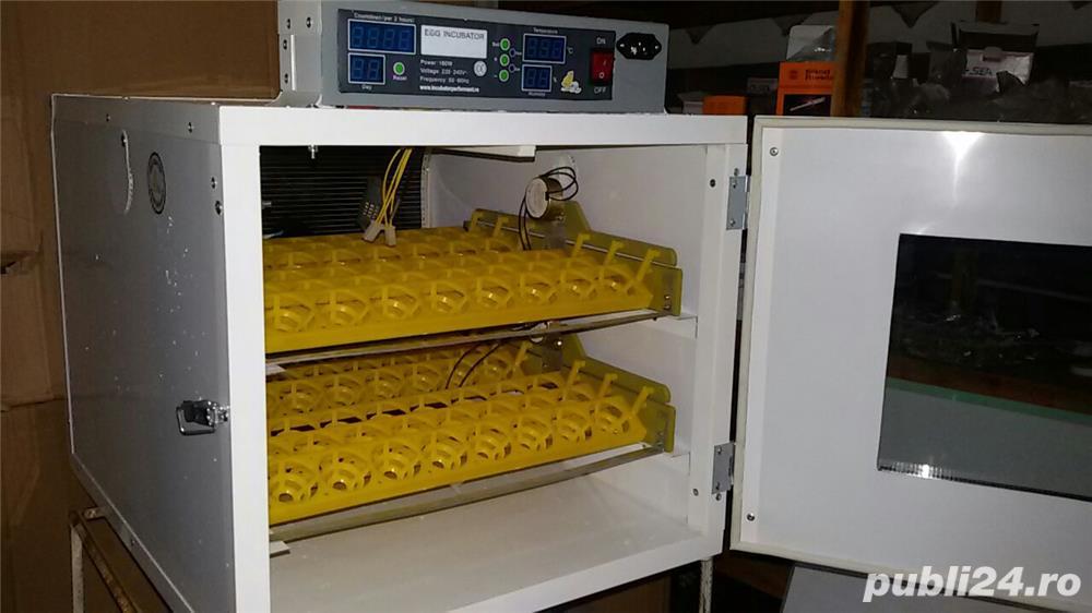 Incubator oua automat