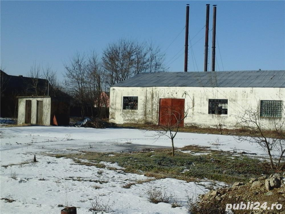 Vanzare  spatii industrial Satu Mare, Dorolt  - 68 EURO