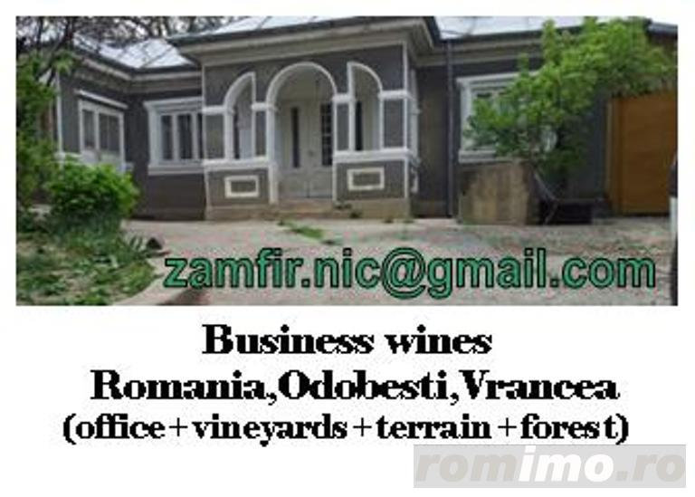 Business profitable (and home / holiday house) for wines in the largest wine region in Romania