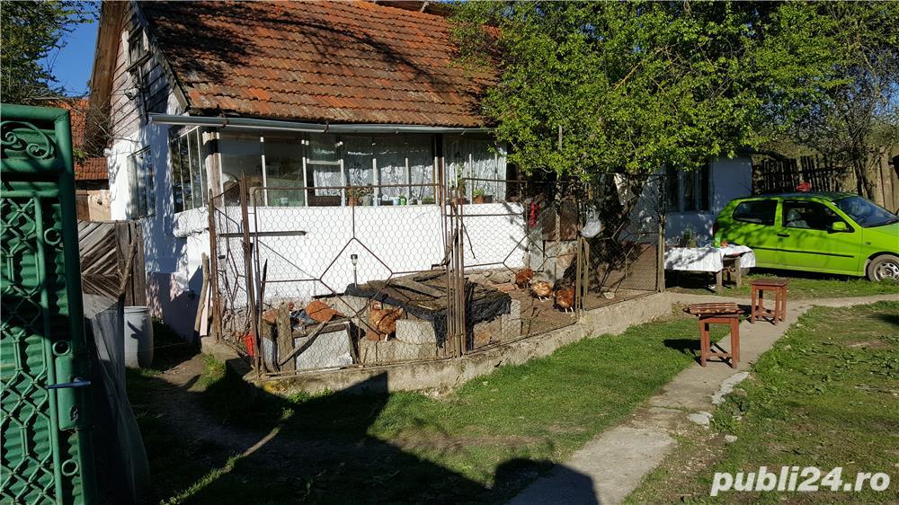 Vanzare  casa  2 camere Timis, Cosava  - 19 EURO