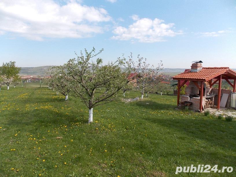 Livada pe teren intravilan, Orlat, jud. Sibiu 6700mp