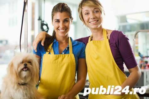 Curs Autorizat Hair Styling Canin Tulcea