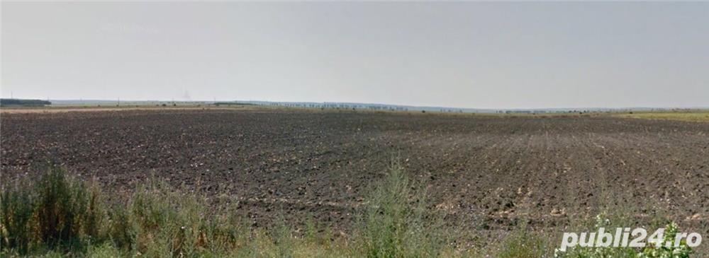 Jud Giurgiu teren agricol