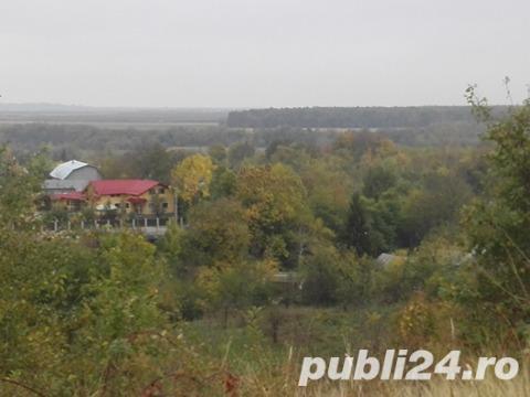 5 ha teren extravilan, pozitie excelenta, centru Comunei Scorteni, jud Prahova
