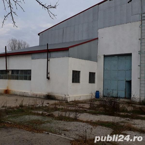 Hala industriala, zona Chiscani