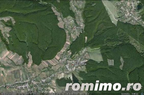 Vand  PADURE FOIOASE  25 + 35 Ha (alaturate) in zona comunei Plopu, langa satul Harsa, jud Prahova