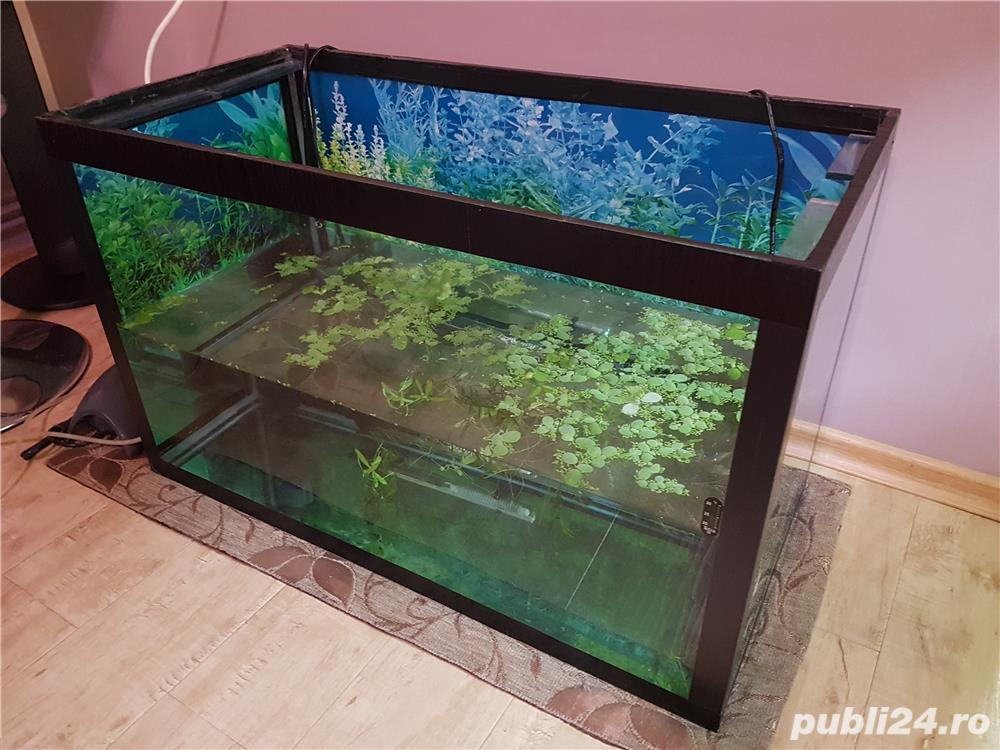 Vand acvariu 128L