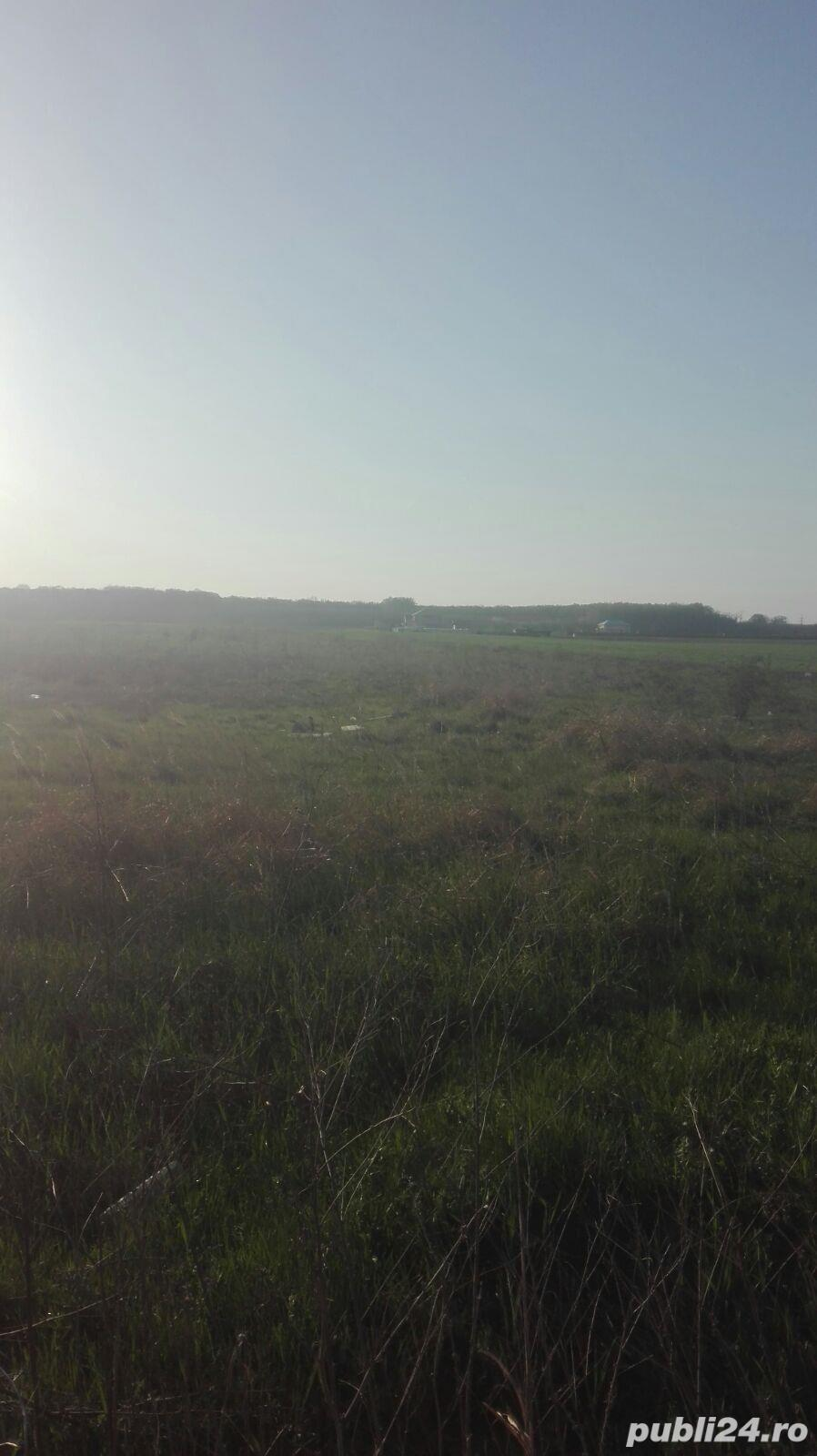 Teren situat in comuna Dragomiresti-Deal