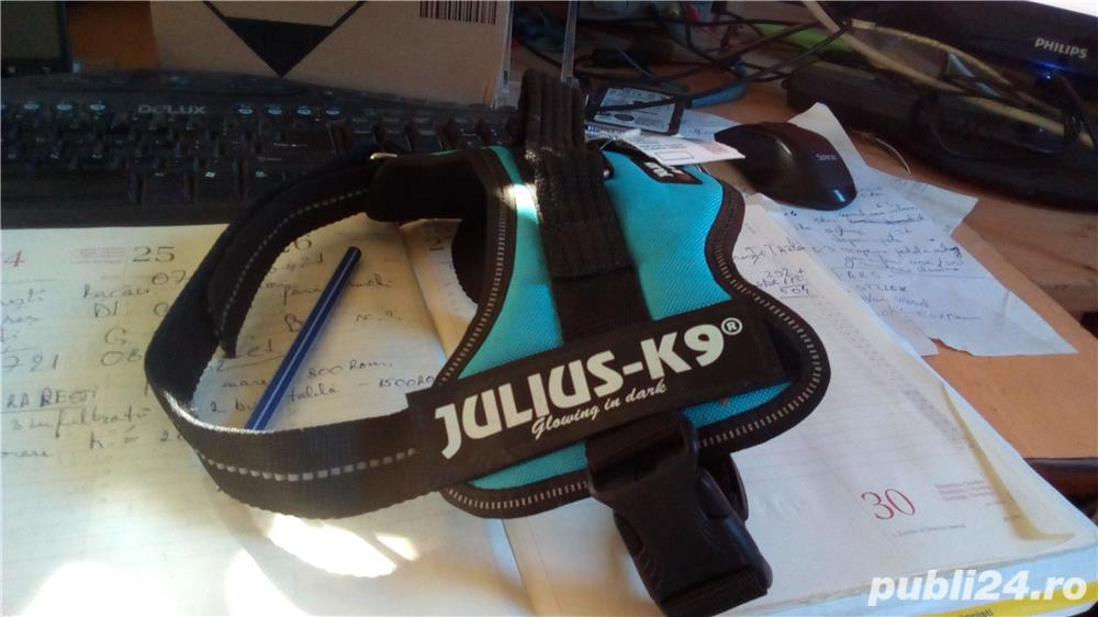 POWER HARNESS JULIUS-K9 MINI 51-67 CM