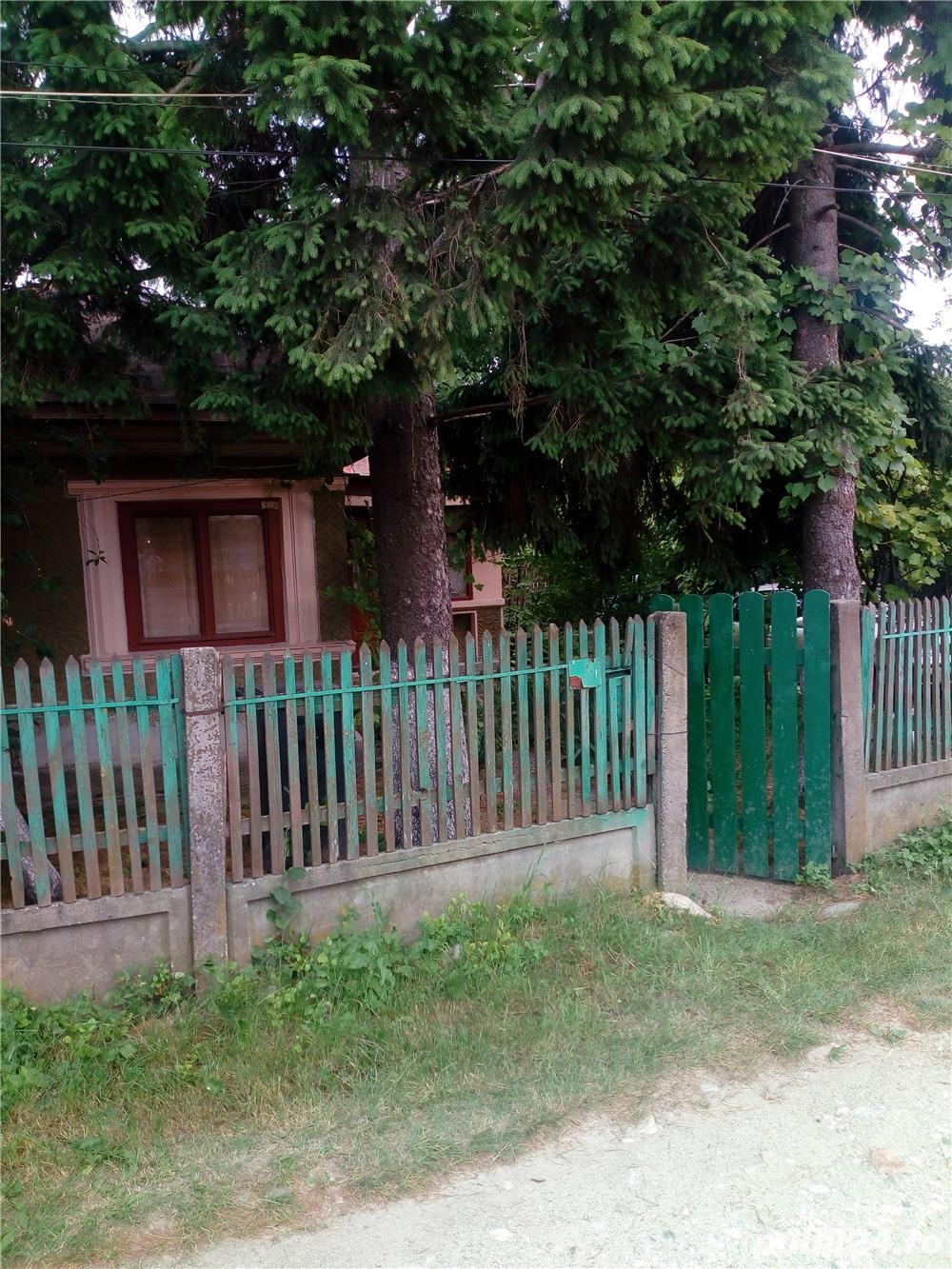 Casa + curte
