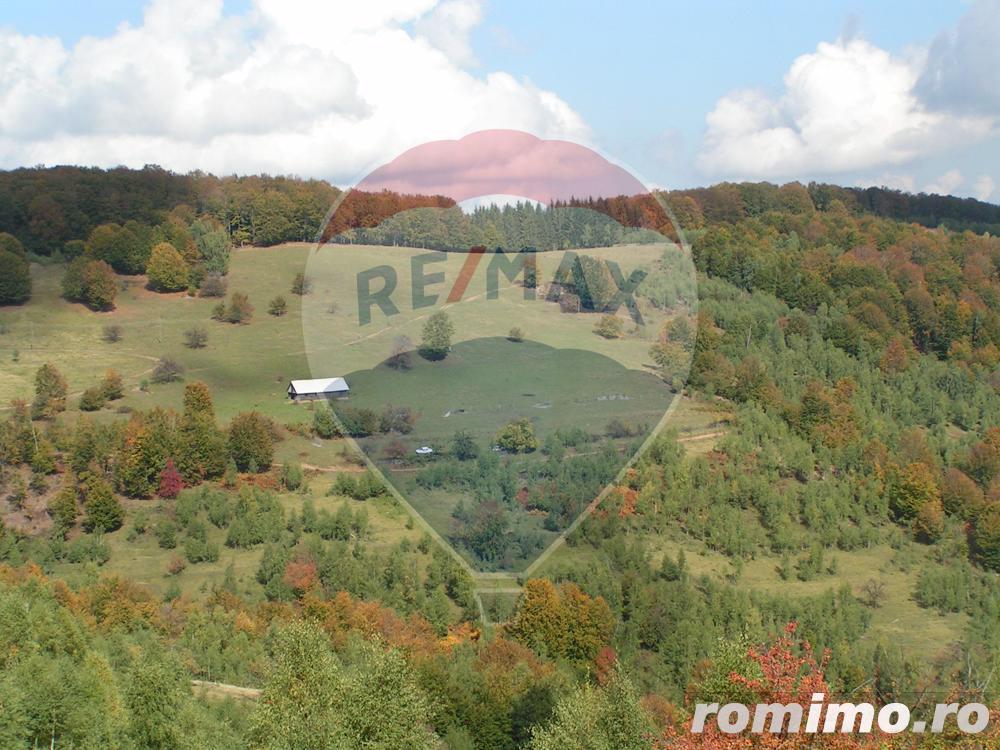 Teren Piatra Craiului 16 ha pt. sat de vacanta, pensiune, cabane.