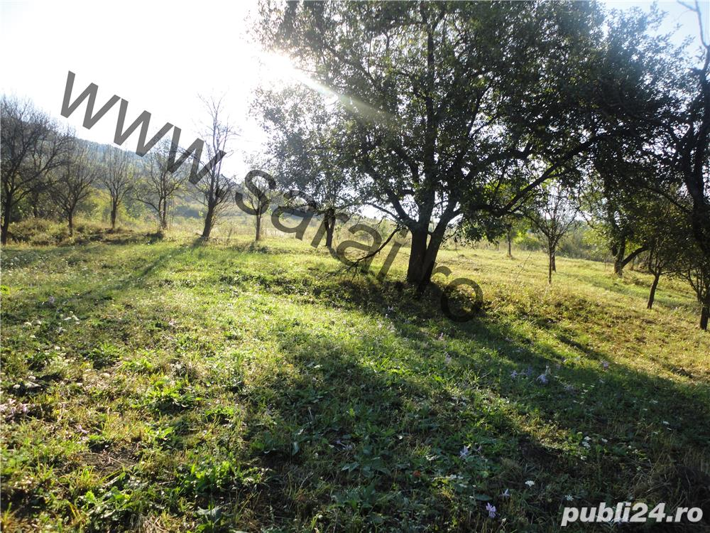Zona Valea Magherus - 5699mp teren intravilan,front 49m+casa si anexe