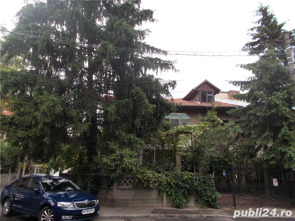 Apartament in vila Kiseleff / Clucerului
