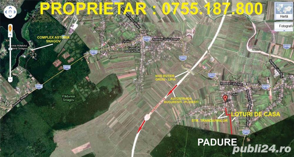 Ilfov,Gruiu - Lipia,Loturi posibilitate RATE, 550 mp,proprietari
