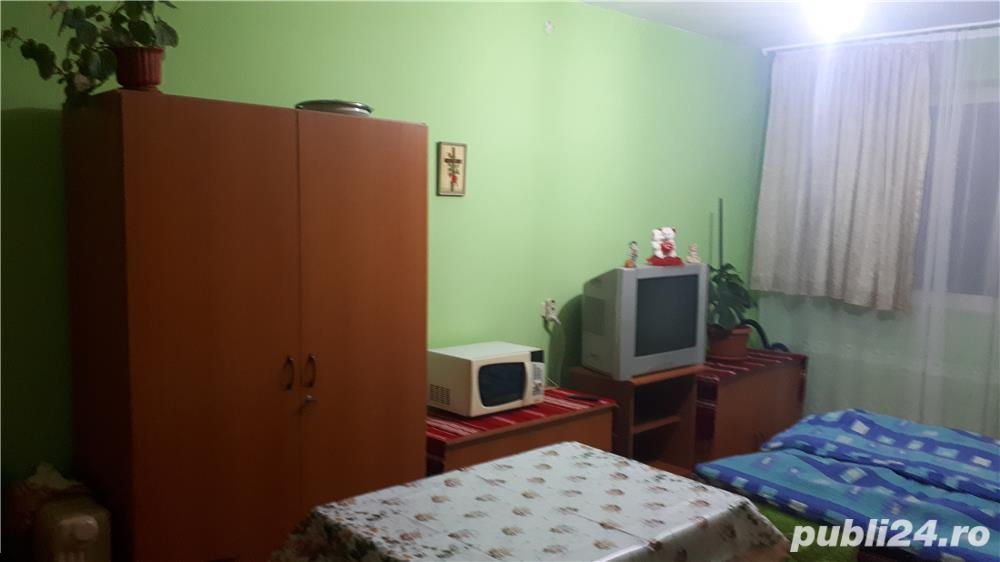 Inchiriere  apartament Timis, Sandra  - 370 EURO lunar