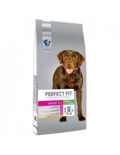 Perfect Fit Dog Adult Medium/Large cu Pui, 14.5 kg