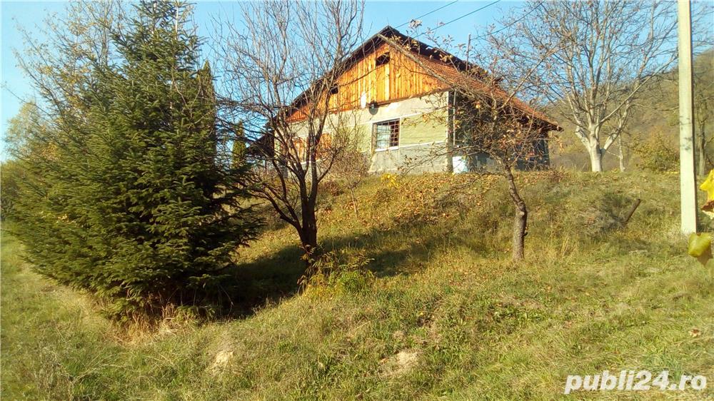 Tautii Magheraus teren intravilan 5000 mp (50 ari) si cladire (casa) veche (79 mp)