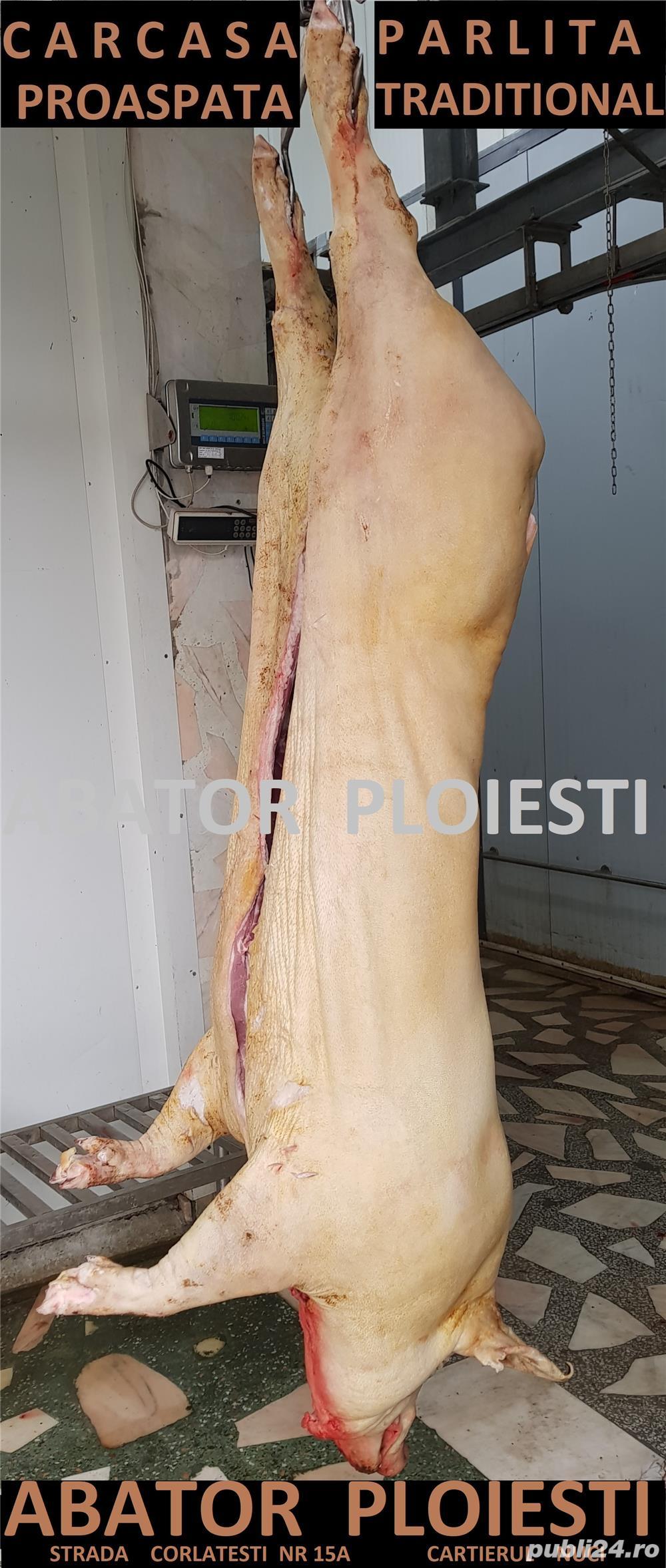 carcasa proaspata porc romanesc rasa carne , parlita tradițional - abator Ploiești