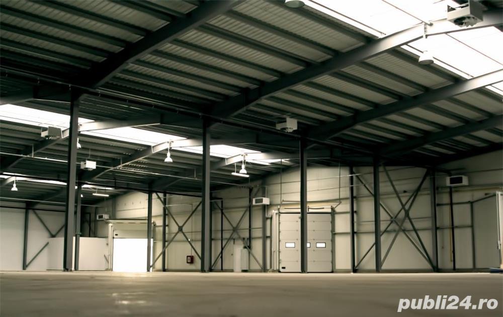 De vanzare hale industriale Arad