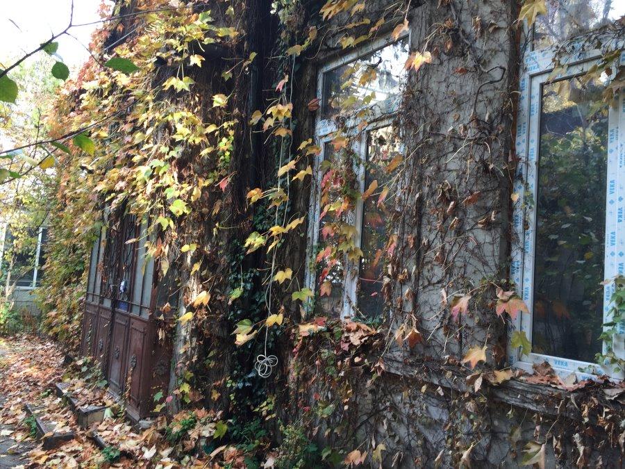 Dorobanti casa demolabila curte comuna