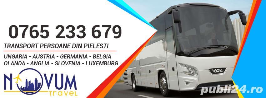 Transport Pielesti Ungaria Austria Germania Belgia Olanda Anglia Slovenia Slovacia Elvetia Luxemburg