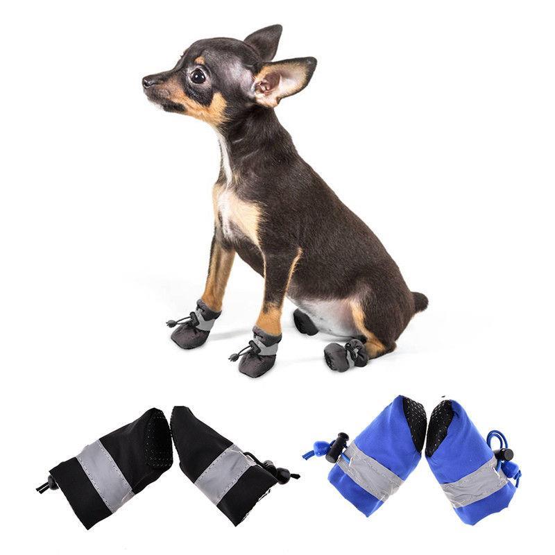 Pantofi Albastrii pentru animale caini