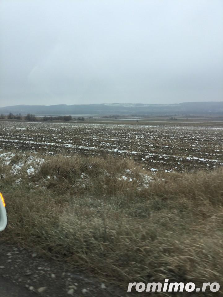 Teren agricol arabil Liteni Rotunda (Suceava) 40 ha compacte