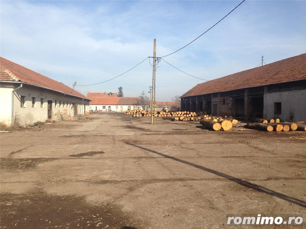 De vanzare ferma cu constructii in comuna Belint cu teren intravilan de 2,87 ha, in zona centrala