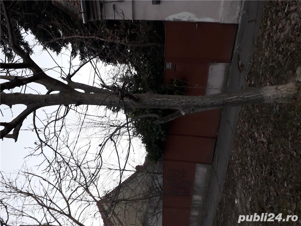Vand teren cu casă în Timișoara