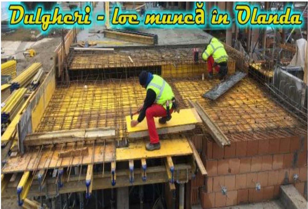 DULGHERI în construcții, Olanda