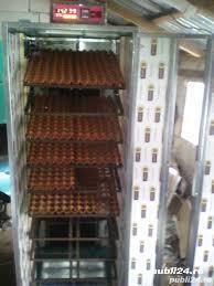 Incubator automat 5200 oua gaina
