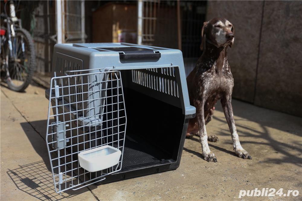 Cușcă transport câini