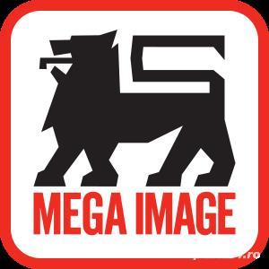 Lucrator comercial Mega Image Shop &Go Fundulea