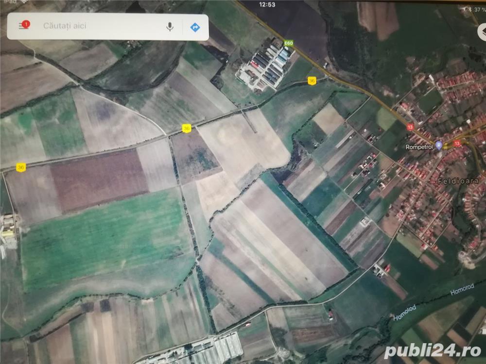 Vand teren agricol 5 ha in Feldioara jud Brasov, la 2 km de DN13