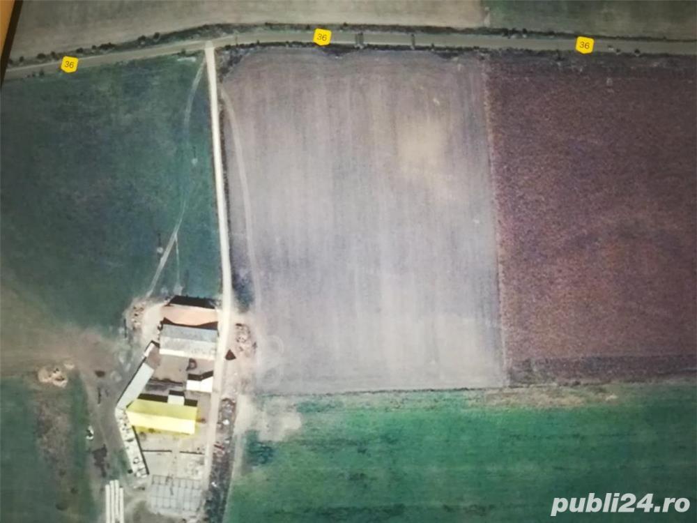 Vând 5 Ha teren agricol situat în Feldioara, jud. Brașov la2 km de DN 13