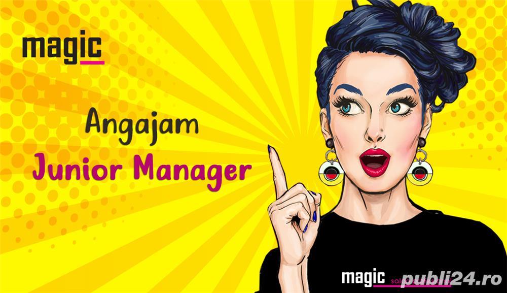 Junior Manager